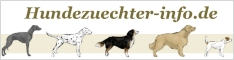 Irish Red and White Setter Züchter bei 'hundezuechter-info.de'