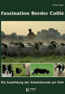 Faszination Border Collie